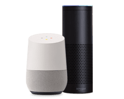 amazon alexa and google homes devices